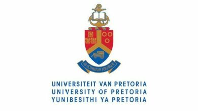Photo of Applications Open For The University of Pretoria Equine Medicine and Surgery Internship Programme 2020
